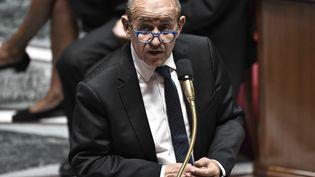 Jean-Yves Le Drian, ministre des Affaires étrangères à l'Assemblée nationale, le mardi 28 juillet. (STEPHANE DE SAKUTIN / AFP)
