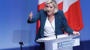 Marine Le Pen, à Paris, le 13 janvier 2019. (JACQUES DEMARTHON / AFP)