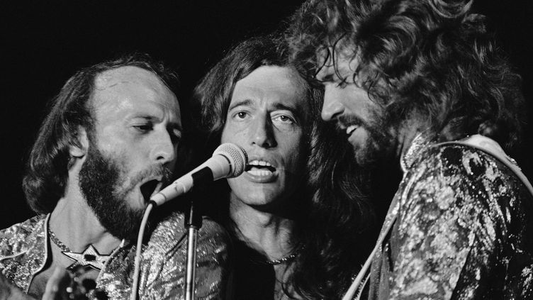 Les Bee Gees en 1979 à Miami Beach  (Phil Sandlin/AP/SIPA)