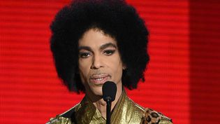Prince aux American Music Awards le 22 novembre 2015  (Kevin Winter / Getty Images / AFP)