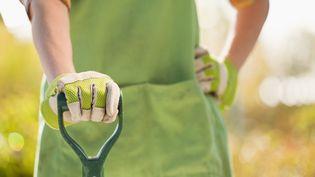 Il y aurait 1 700 postes de jardinier paysagiste à pourvoir en France. (MIKE KEMP / BLEND IMAGES / GETTY IMAGES)