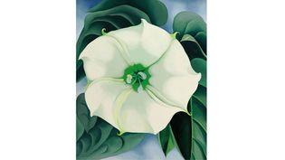 """Jimson Weed/White Flower No. 1"" de Georgia O'Keeffe  (AP/Sipa)"
