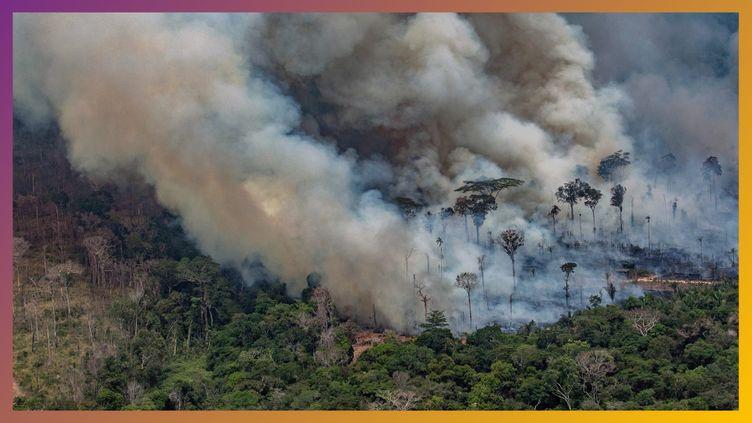 L'Amazonie brûle-t-elle plus qu'avant ? (RADIOFRANCE)