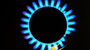 La tarification progressive de l'énergie concernera en premier lieu le gaz et l'électricité, avant le fioul, le gaz en cuve et le bois de chauffage. (FRED TANNEAU / AFP)