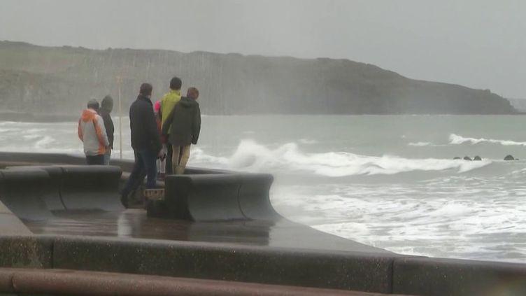 Alors que la tempête Ciara s'apprête à toucher la moitié nord du pays dimanche 9 février, Fabienne Amiach est sur le plateau du 19/20 pour décrypter ce phénomène météorologique. (France 3)