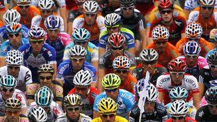 Le peloton du Tour de France, au départ de la deuxième étape, à Bruxelles (Belgique), le 5 juillet 2010. (JOEL SAGET / AFP)