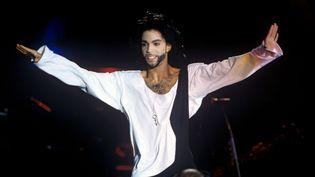 Prince, le 14 juin 1990, lors d'un concert à Munich (Allemagne). (FRYDERYK GABOWICZ / PICTURE ALLIANCE / AFP)