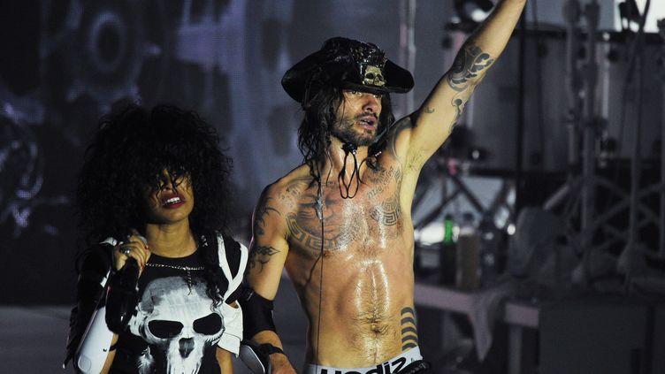 Shaka Ponk en concert à la Rochelle, juillet 2014  (XAVIER LEOTY / AFP)