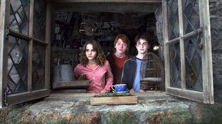 """Extrait du film """"Harry Potter et le prisonnier d'Azkaban"""" d'Alfonso Cuaron. (WARNER BROS / 1492 PICTURES / AFP)"""