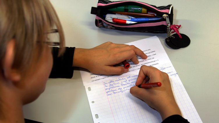 Une élève écrit une dictée àThionville (Moselle), le 18 septembre 2015. (MAXPPP)