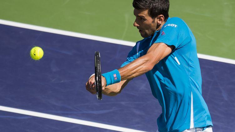 Novak Djokovic (ROBYN BECK / AFP)