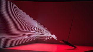 Danse numérique. (FRANCE 2)