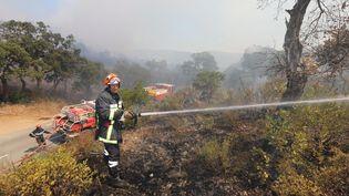 Un pompier lutte contre les flammes, le 26 juillet 2017, à Bormes-les-Mimosas (Var). (MAXPPP)