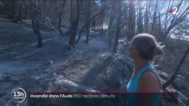 Aude : un incendie emporte 850 hectares