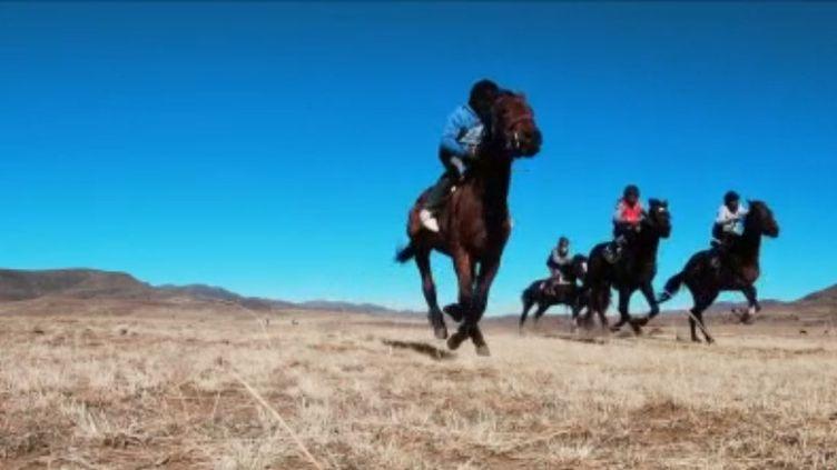 Ancienne colonie britannique et petit paradis, le Lesotho un pays dans lequel peu de voyageurs se sont aventurés. On y trouve des hauts pâturages, des cowboys, et leurs fières montures. Des chevaux qui courent pour le roi une fois par an. (France 2)