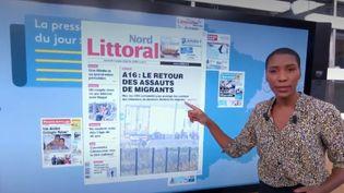 Kiosque à journaux : Les étudiants quittent Angers, dauphins en sursis et artisans ambulants (FRANCEINFO)