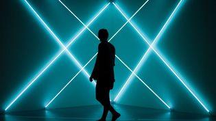 """""""Triple X Neonly"""" de François Morellet, exposé au Grand Palais dans le cadre de l'exposition """"Dynamo"""" (avril 2013)  (Fred Dufour / AFP)"""