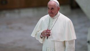 Le pape François. Photo d'illustration. (EVANDRO INETTI / MAXPPP)