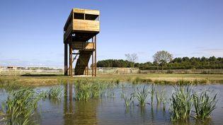 Un observatoire à oiseaux dans les marais de Saint-Ciers-sur-Gironde. (PHILIPPE ROY / PHILIPPE ROY)