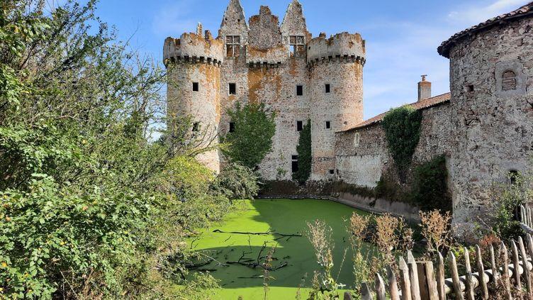 Le château de l'Ébaupinay dans les Deux-Sèvres. (ANNE CHÉPEAU / FRANCE-INFO)