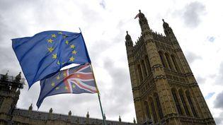 Des drapeaux devant le Parlement britannique à Londres (Royaume-Uni), pendant une manifestation anti-Brexit le 3 septembre 2019 (NEIL HALL / EPA)