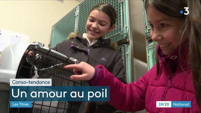 Bretagne  : la tempête Isaias se donne en spectacle