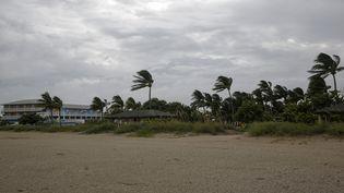 Des rafales de ventà Fort Pierce (Floride) à l'approche del'ouragan Dorian, le 2 septembre 2019. (ADAM DELGIUDICE / AFP)