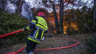 Des pompiers interviennent pour contenir un incendie à Carnoux (Bouches-du-Rhône), le 19 août 2017. (FABIEN COURTITARAT / HANS LUCAS / AFP)