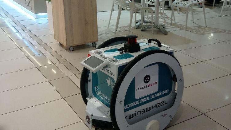 Un robot pour porter vos courses testé à Paris, en avril 2018. (Guillaume Farriol / France Bleu Paris / RADIO FRANCE)