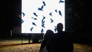 L'installation de l'artiste belge Agnès Guillaume au Musée d'art moderne de la Ville de Paris, le 2 octobre 2020 (BERTRAND GUAY / AFP)
