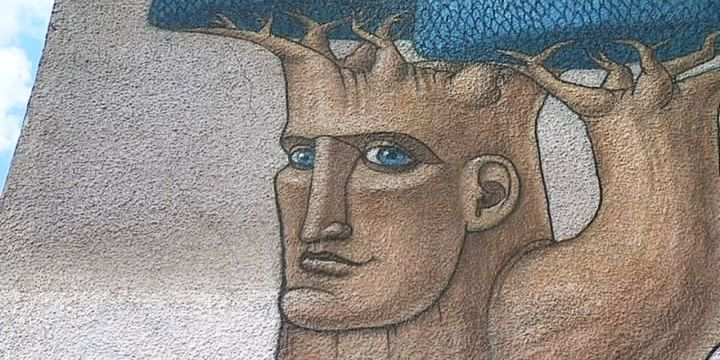 Des artistes repensent les murs gris en couleurs, en graffant de grandes fresques.  (France 3 / Culturebox)