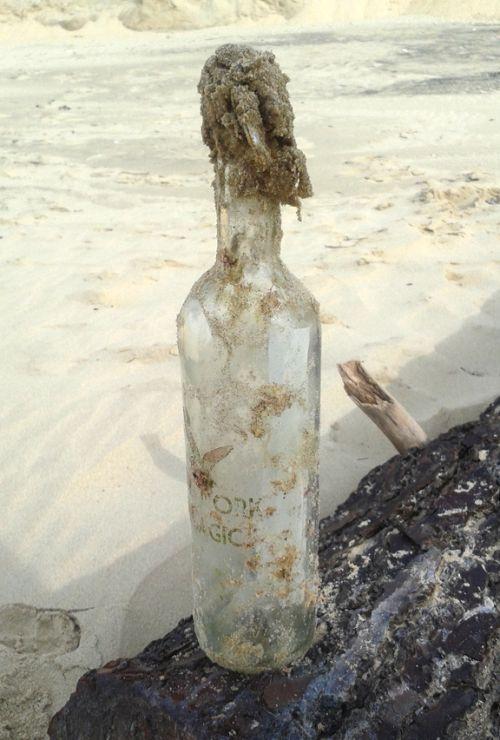 Alain et Brigitte Barthélémy ont retrouvé cette bouteille en provenance de New York sur une plage de La Tremblade, en Charente-Maritime. (DR)
