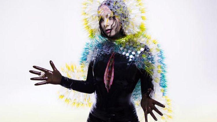 (La couverture du nouvel album de Björk © Twitter @bjork)