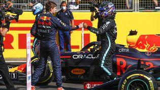 Lewis Hamilton n'est pas parvenu à conserver sa première place sur la grille de départ à Silverstone, devant son public. (XAVI BONILLA / XAVI BONILLA)