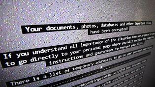 Cette photo prise le 3 novembre 2016 montre une liste de virus informatique dans laboratoire spécialisé en sécurité informatique à l'Institut national de la recherche en informatique et en automatique (Inria) (DAMIEN MEYER / AFP)