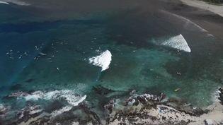 La Réunion : un protocole de prévention contre les attaques de requins a été mis en place  (FRANCEINFO)