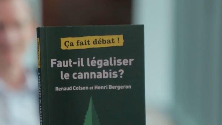 Entretien : faut-il légaliser le cannabis ? (FRANCEINFO)