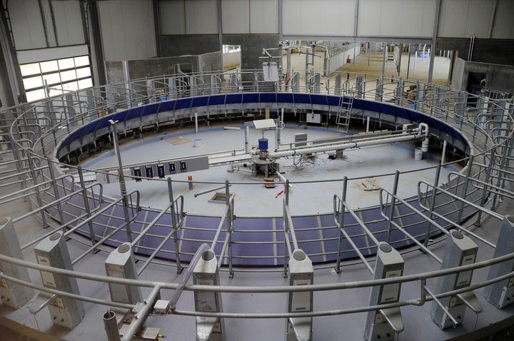 """La salle de traite de la """"ferme des mille vaches"""" (Somme), le 20 juin 2014. (FRANCOIS LO PRESTI / AFP)"""
