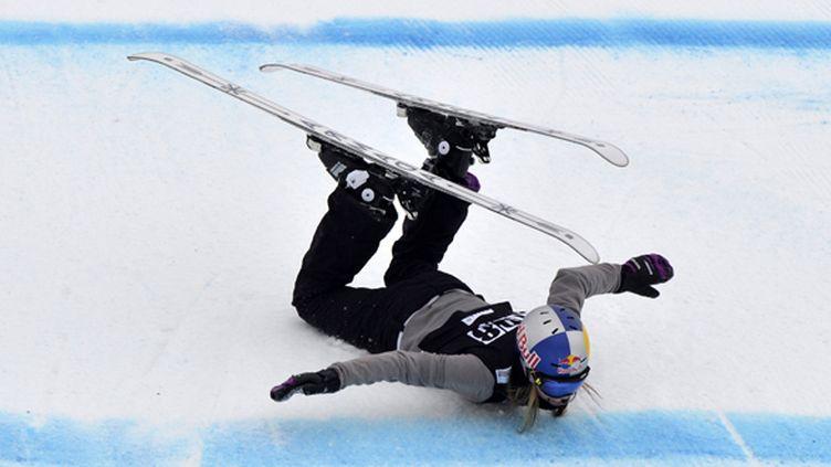 Le Slopestyle en ski fait partie des douze nouvelles disciplines aux JO de Sotchi.  (RICHARD JUILLIART / AFP)