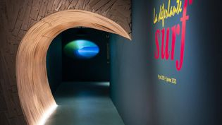 Plongez dans l'histoire du surf au musée d'Aquitaine jusqu'en janvier 2020. (CAPTURE D'ÉCRAN FRANCE 3)