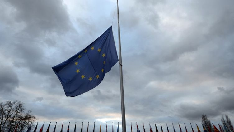 Un drapeau européen flotte devant le conseil de l'Europe à Strasbourg (Bas-Rhin), le 6 décembre 2013. (PATRICK HERTZOG / AFP)