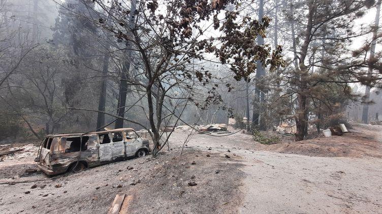 Le nord de la Californie ravagé par les flammes. La route de Berry Creek le 12 septembre 2020. (BENJAMIN  ILLY / FRANCEINFO / RADIO FRANCE)
