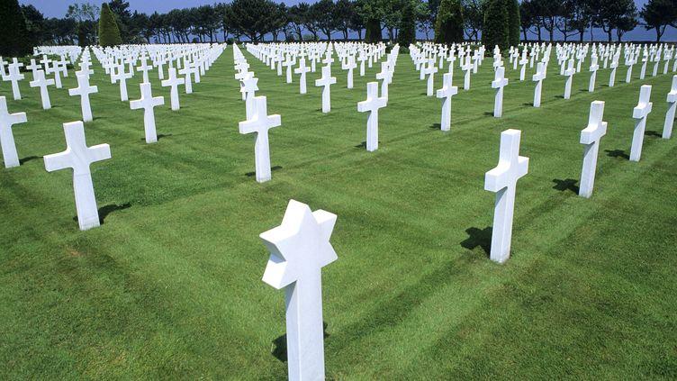 Le cimetière américain de Colleville-sur-Mer (Calvados), qui abrite des soldats morts pendant la seconde guerre mondiale. (ANTOINE LORGNIER / ONLY FRANCE / AFP)