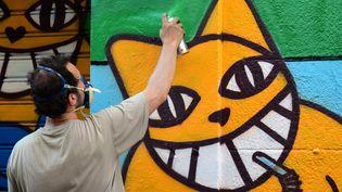 Monsieur Chat, alias Thoma Vuille, à Marseille le 12 juillet 2015  (CitizenSide / Georges Robert / AFP)