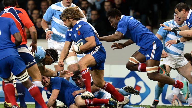 Le XV de France face à l'Argentine, au Grand stade de Lille (Nord), le 17 novembre 2012. (FRANCK FIFE / AFP)