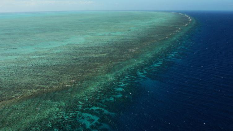 La Grande barrière de corail en Australie. (PHIL WALTER / GETTY IMAGES ASIAPAC)