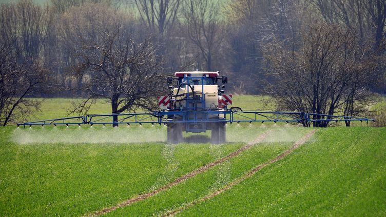 Un agriculteur répand du glyphosate, en Bavière (Allemagne), en mars 2019. (SVEN SIMON / FRANKHOERMANN / AFP)
