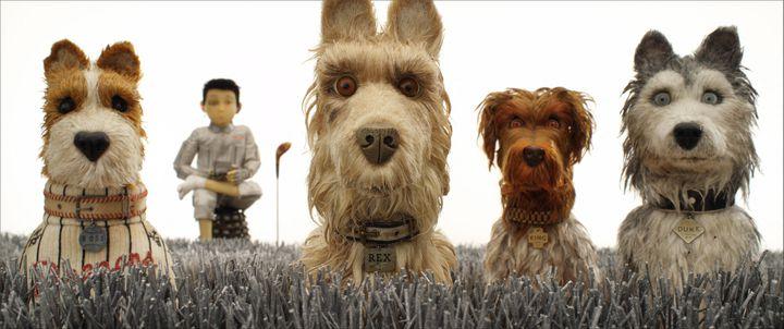 """""""L'île aux chiens"""", le second film d'animation de Wes Anderson, sorti en 2018 (FOX SEARCHLIGHT PICTURES / INDIA / COLLECTION CHRISTOPHEL VIA AFP)"""