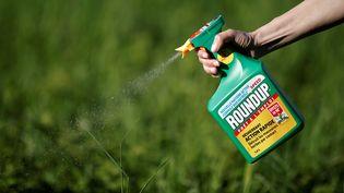 Le groupe Monsanto a été reconnu coupable, le 27 mars 2019, de négligence par un jury californien et condamné à verser près de 81 millions de dollars à un retraité américain souffrant d'un cancer qu'il attribue au Roundup. (BENOIT TESSIER / REUTERS)