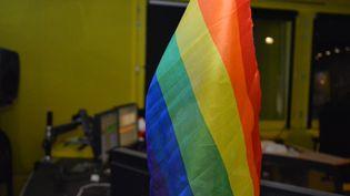 Drapeau arc-en-ciel, symbole de la communauté LGBT, dans une régie à franceinfo. (JEAN-CHRISTOPHE BOURDILLAT / RADIO FRANCE)